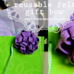 Reusable Felt Gift Bow Feature Photo