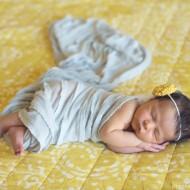 (amelia) newborn photos and birth announcement