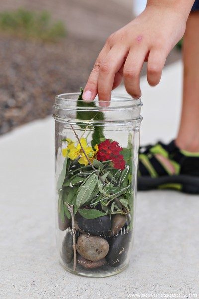 Nature Walk Terrarium for Kids