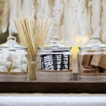 Party: Rustic S'mores Bar and S'mores Pops