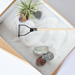 Craft: Mini Zen Garden for Father's Day