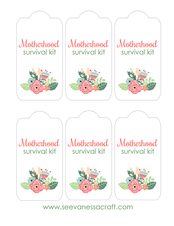 MotherhoodSurvivalKit copy