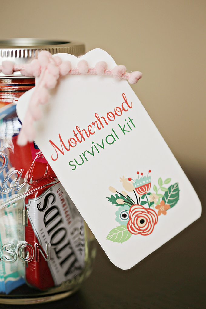 MotherhoodSurvivalKit2 copy