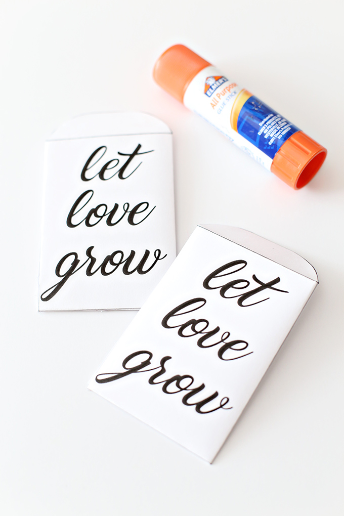 Let Love Grow Seed Packet 2 copy
