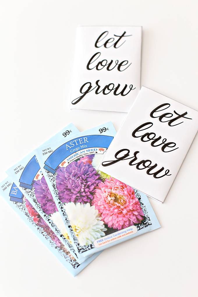 Let Love Grow Seed Packet 3 copy