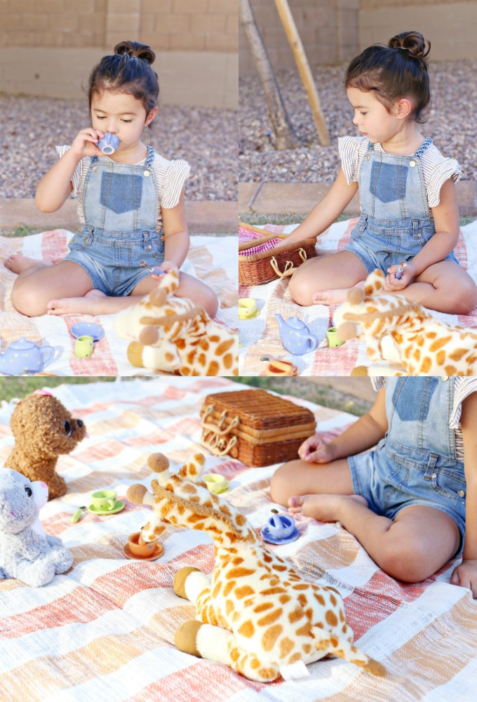 Summer Outdoor Picnic with Stuffed Animals