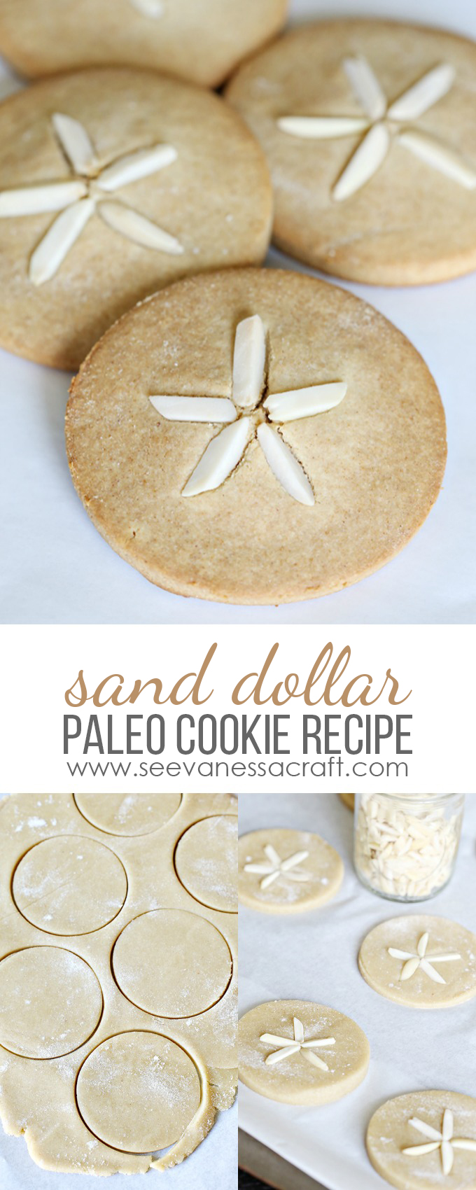 Sand Dollar Cookie Recipe copy