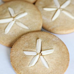 Sand Dollar Paleo Cookie Recipe: gluten free, sugar free, dairy free