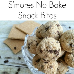 smores_snack_bites