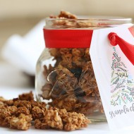 Homemade Granola Clusters Recipe - Holiday Gift Idea