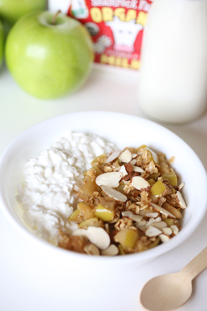 Apple Crisp Cottage Cheese Bowl 5 copy