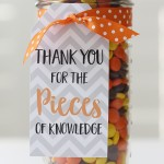 Craft: Teacher Appreciation Reese's Pieces Gift Idea