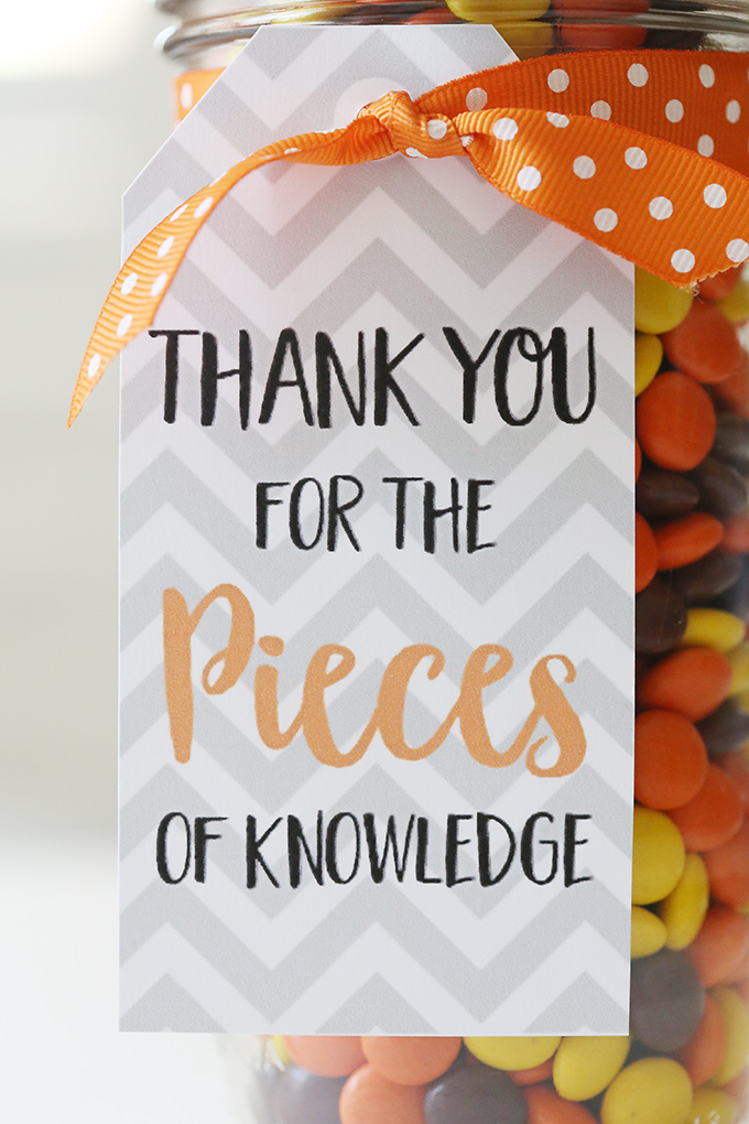 Teacher Appreciation Gift Idea 6 copy