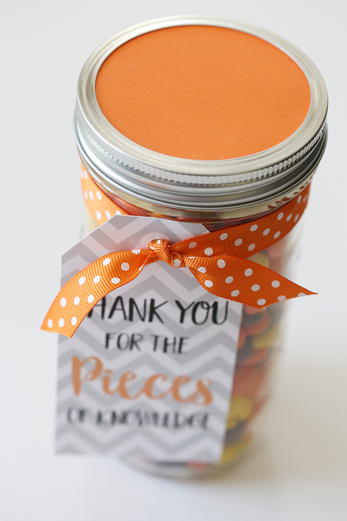 Teacher Appreciation Gift Idea 7 copy