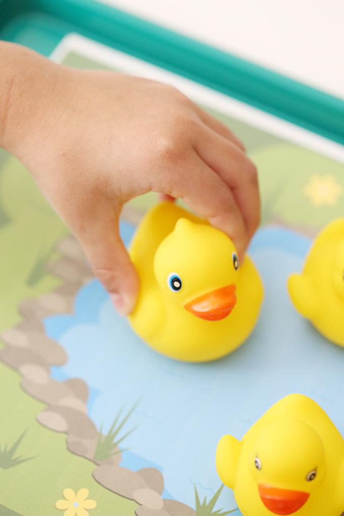 Duck Pond Car Tray 11 copy