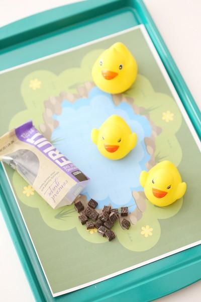 Duck Pond Car Tray 4 copy