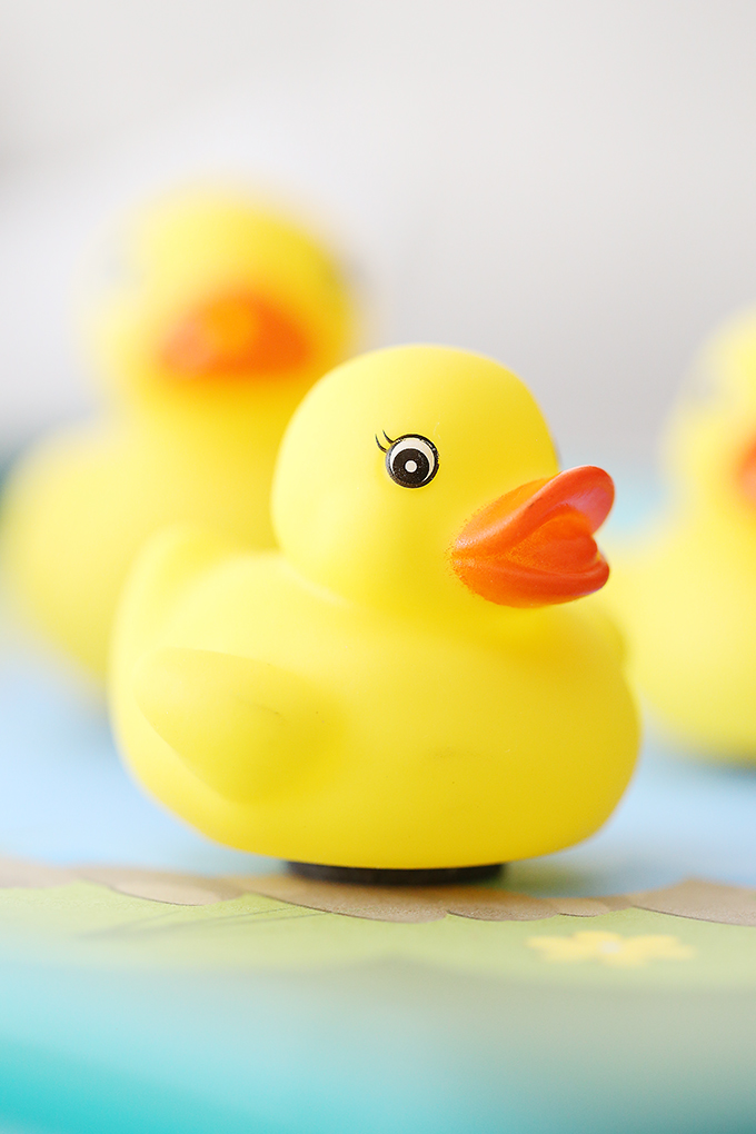 Duck Pond Car Tray 9 copy