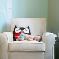 DIY: Woodland Creature Baby Nursery