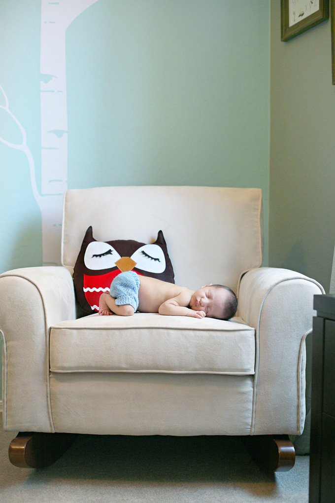Woodland Creature Baby Nursery Decor
