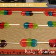 (crafting on a dime) jolly rancher suckers