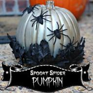 (20 crafty days of halloween) spooky spider pumpkin