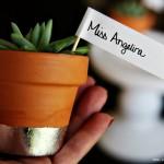 (diy tutorial) thanksgiving mini succulent gilded place cards & teacher gift