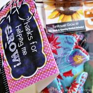 (gift idea) teacher appreciation garden kit jar