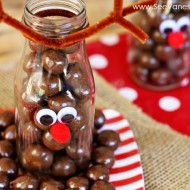 (diy craft) reindeer milk bottles