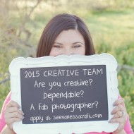 Apply Now for the 2015 See Vanessa Craft Creative Team