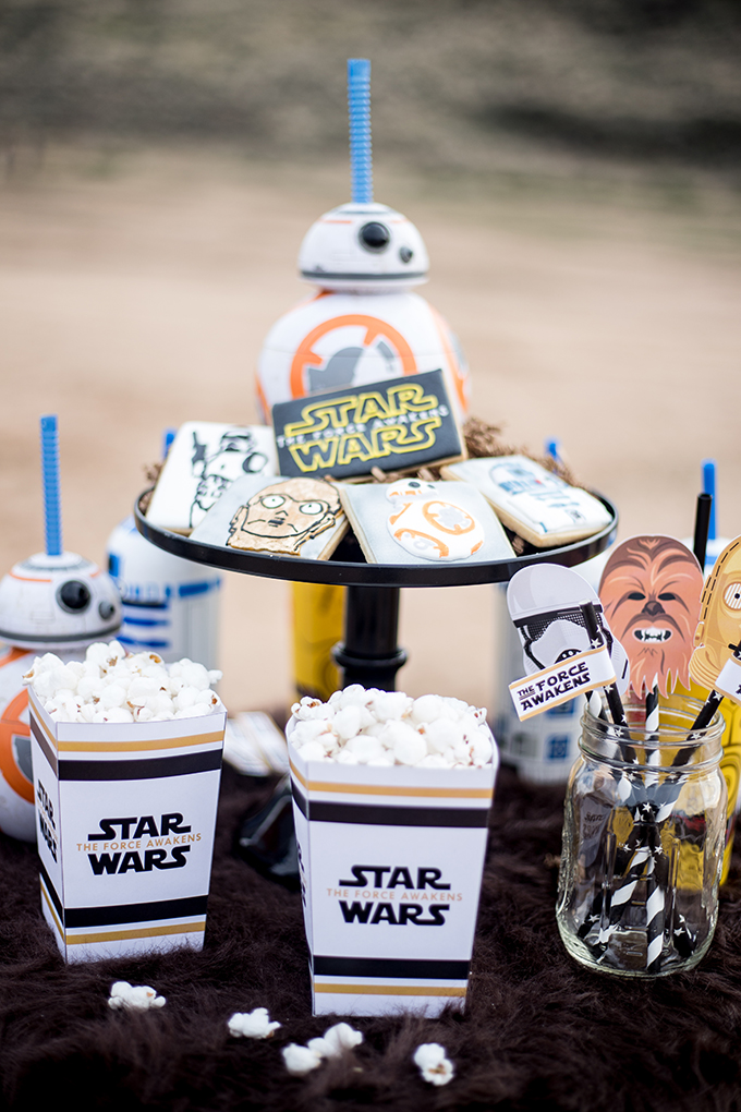 The Force Awakens Birthday Party_-13