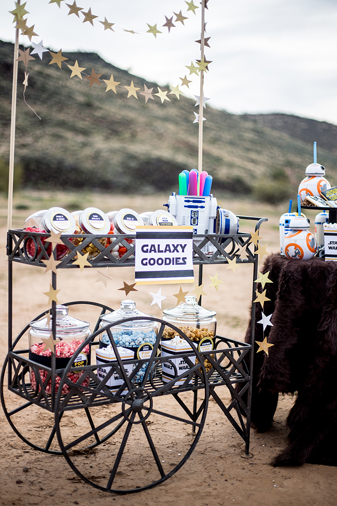 The Force Awakens Birthday Party_-22