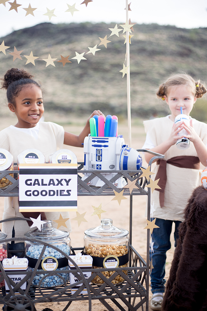 The Force Awakens Birthday Party_-37