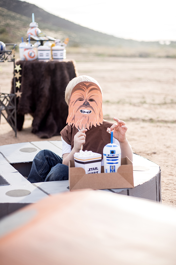 The Force Awakens Birthday Party_-53