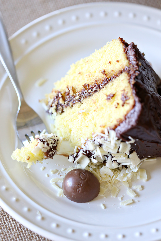 Yellow Chocolate Easter Cake 9 copy