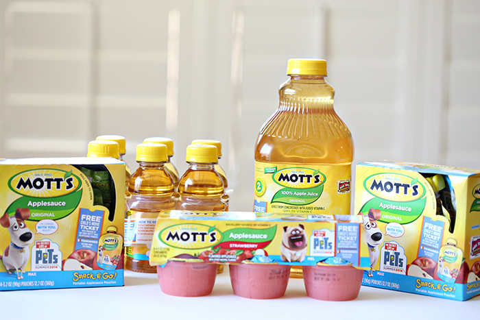 Motts Applesauce Dog Craft 1 copy