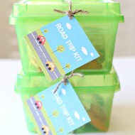 Kid Friendly: Road Trip Kit and Printable