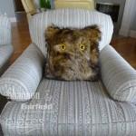 Halloween: Furry Monster Pillows