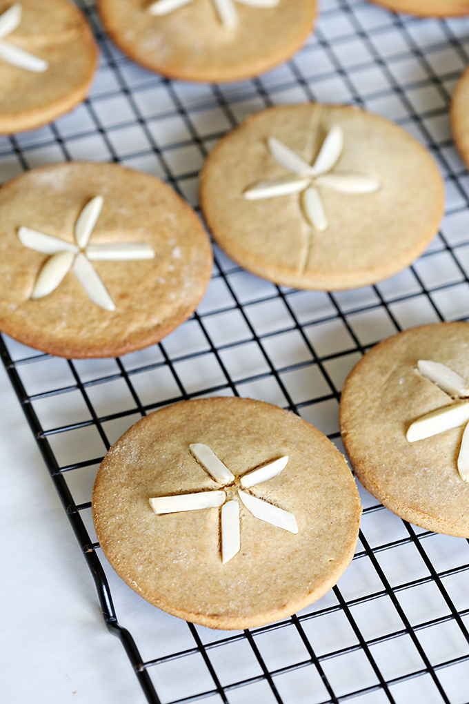 Sand Dollar Paleo Cookies 6 copy