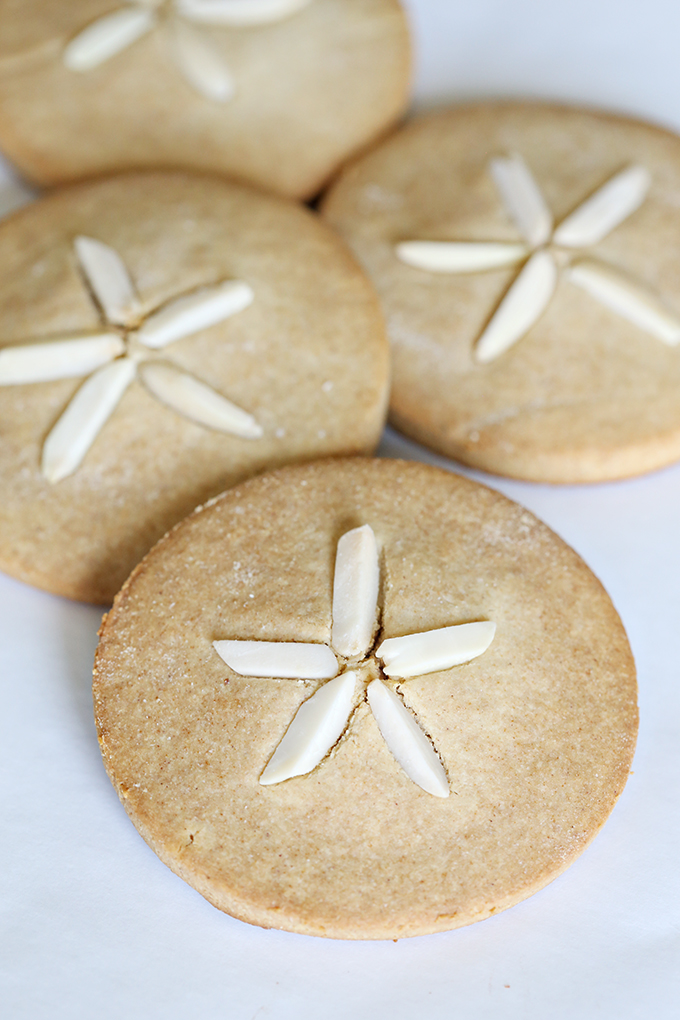 Sand Dollar Paleo Cookies 7 copy