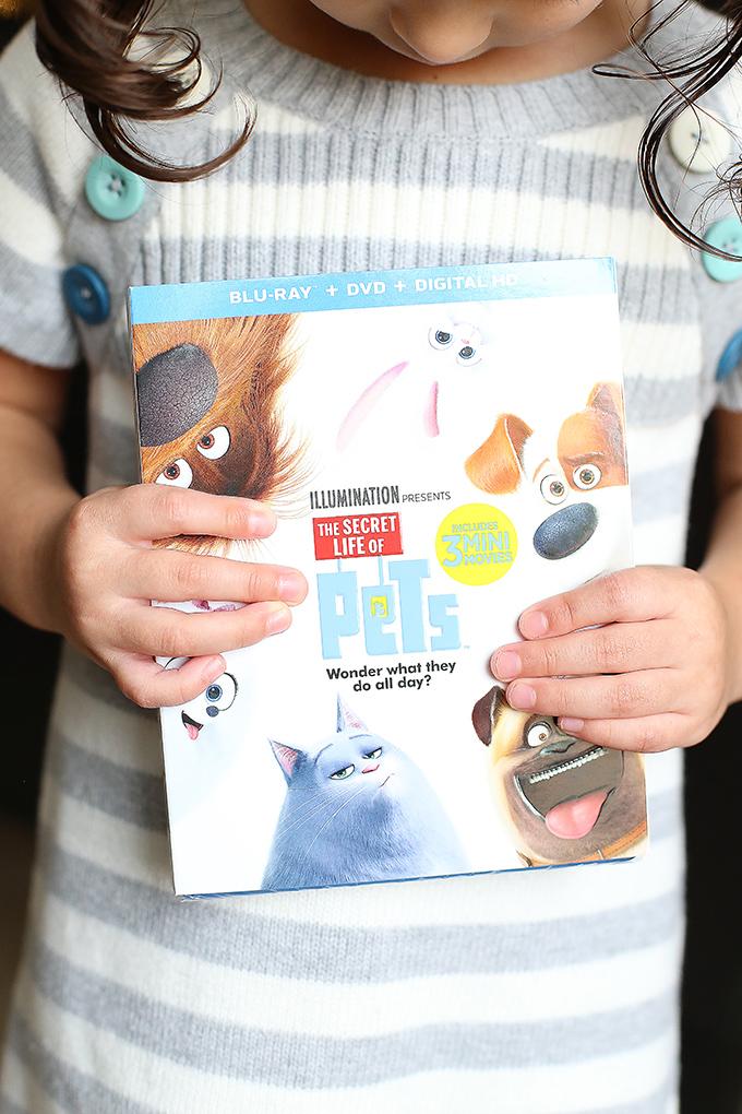 secret-life-of-pets-movie-night-party-16-copy