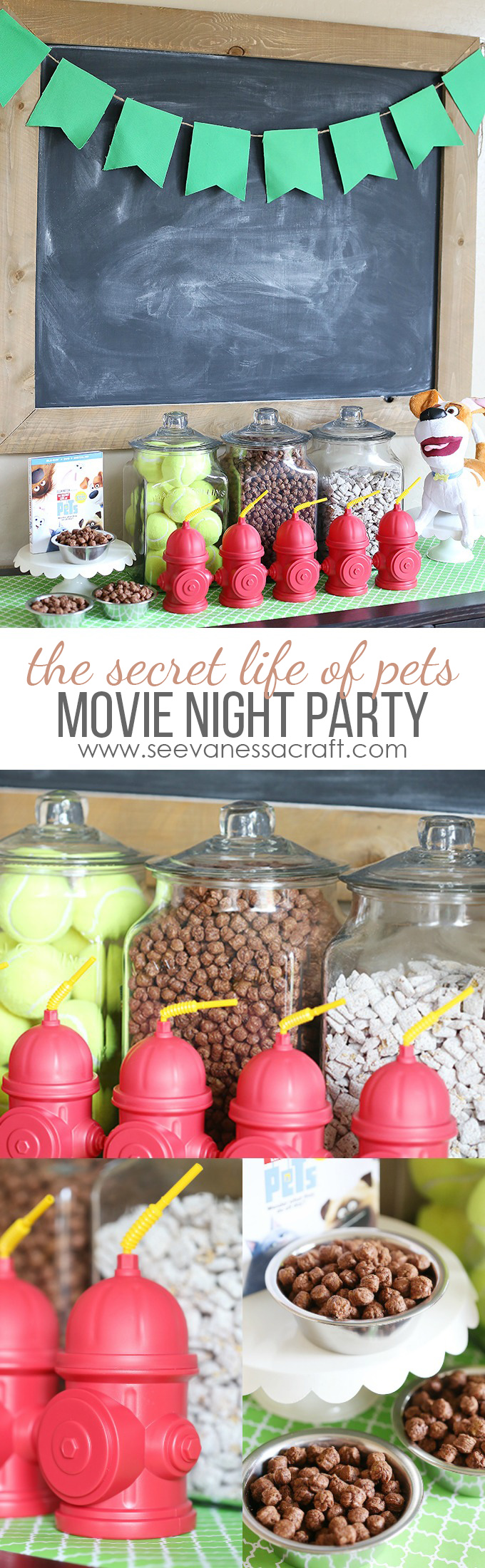 the-secret-life-of-pets-movie-night-party-copy