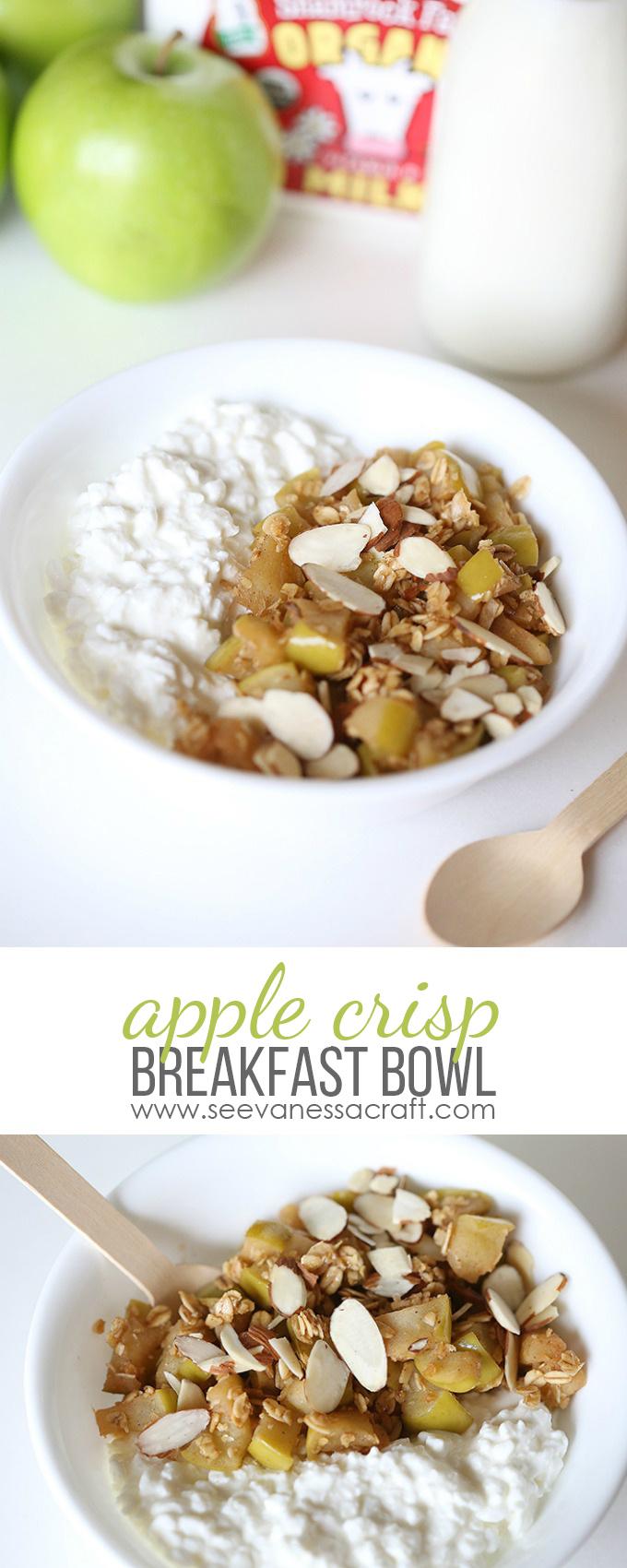 Apple Crisp Breakfast Bowl copy