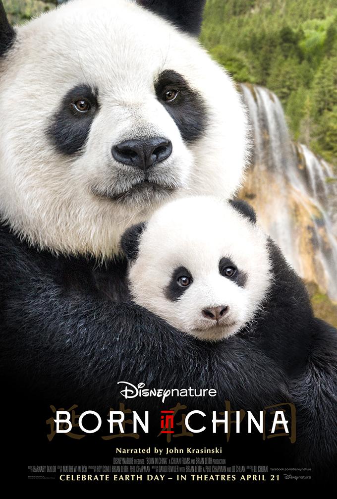 BornInChina58485bdf79860