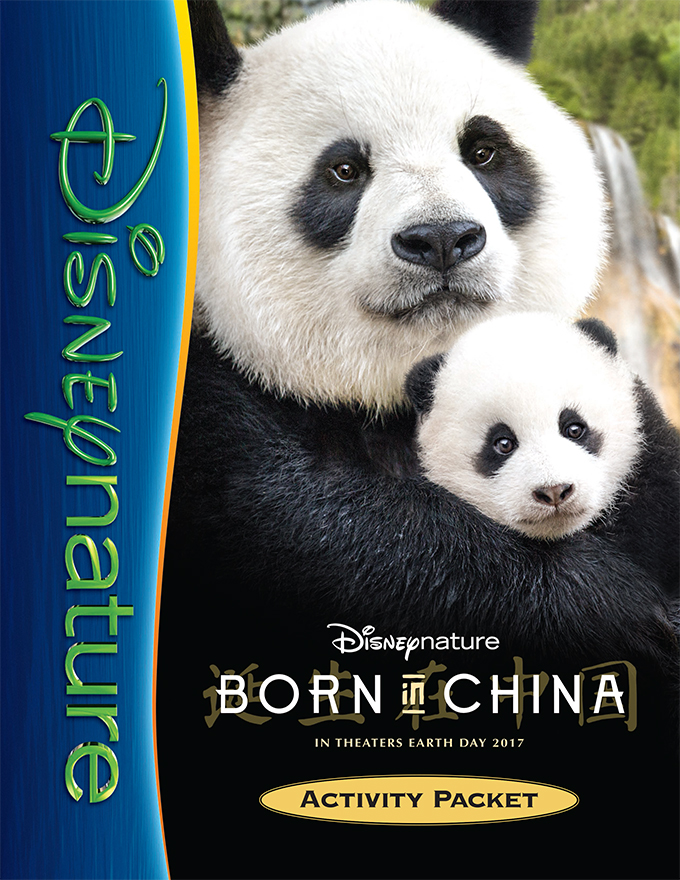 BornInChina Activity Packet