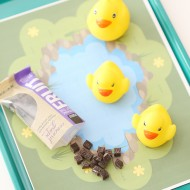 Craft: Road Trip Duck Pond Printable