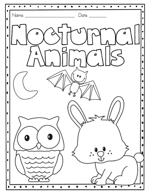 nocturnal animals coloring pages - photo#20