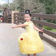 Tips for going to Disney World with Preschoolers and young kids.