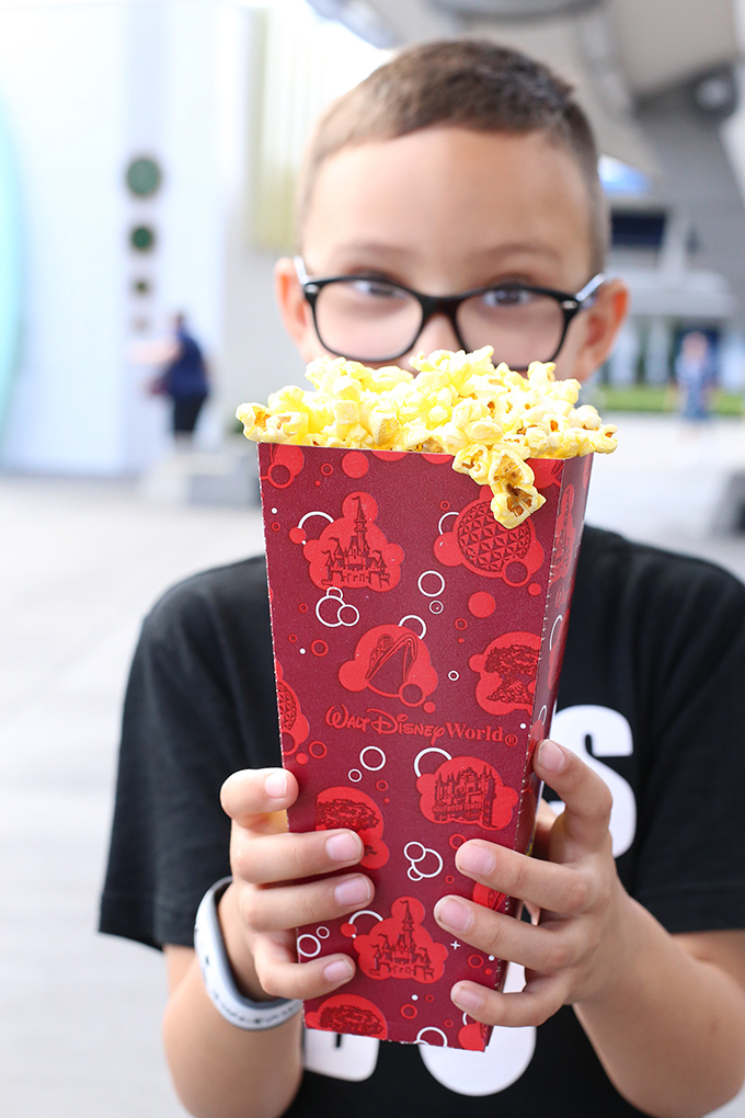 Disney World Popcorn Snack copy