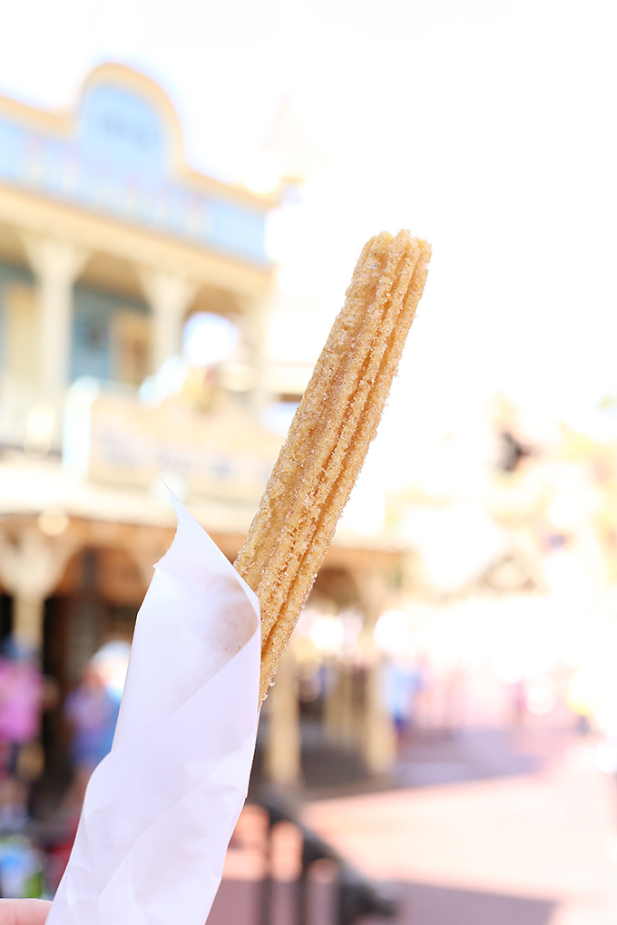 Frontierland Churro copy