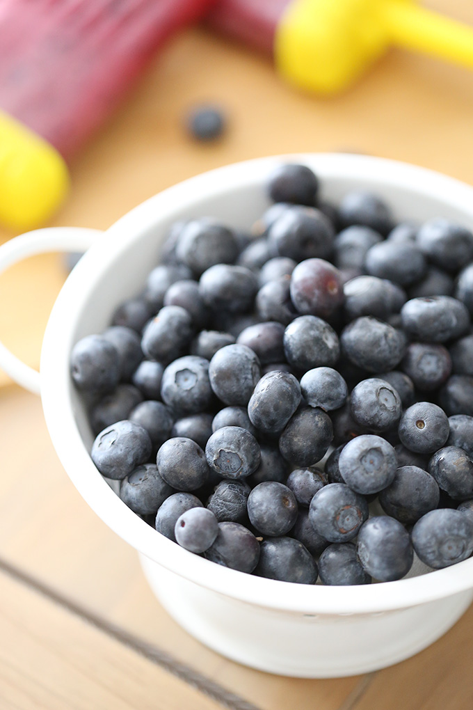 Pomegranate Blueberry Popsicle Recipe 2 copy